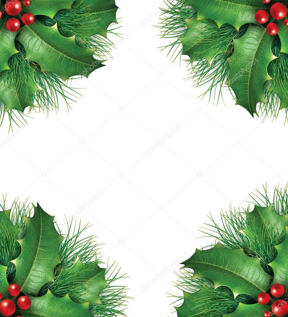 赫莉与松树分支和红色浆果为代表喜庆冬天