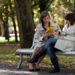 Stock Photo: Young pretty girls gossiping at autumn park