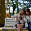 Young pretty girls gossiping at the autumn park — Stock Photo #7197762