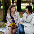 Young pretty girls gossiping at the autumn park — Stock Photo