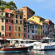Portofino, Italy — Stock Photo #7194786