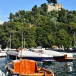 Portofino, Italy — Stock Photo #7194800