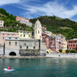 Vernazza village in the Cinque Terre, Italy — Stock Photo #7263716