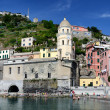 Vernazza village in the Cinque Terre, Italy — Stock Photo #7263723