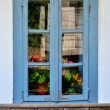 Traditional wooden window in Romania villlage - Stock fotografie
