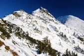 Montañas de los Cárpatos en temporada de invierno, Rumania — Foto de Stock