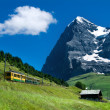 Jungfraubahn train in Eiger mountain, Switzerland - Stock Photo