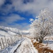 Winter road landscape in countryside - Stock Photo