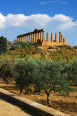 Temple of June (Agrigento, Sicily) — Stok fotoğraf