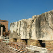 Roman Forum 4 — Stock Photo