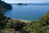 Coast in the Abel Tasman — Stock Photo