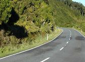 Westland Tai Pountini National Park — Stock Photo
