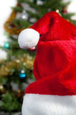Red Hat santa on the background of green trees — Stock Photo