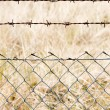 Wire mesh close up — Stock Photo