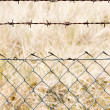 Wire mesh close up — Stockfoto