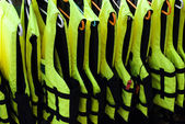 Life vests in a row — Stock Photo