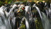 водопад на плитвицкие озёра - плитвицкие озёра — Стоковое фото