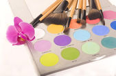 Professionelle make-up-palette und pinsel — Stockfoto