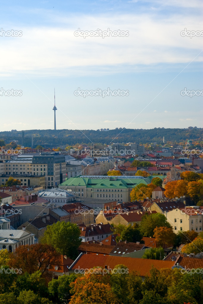 Vilnius. Capital of Lithuania — Stock Photo #7213867