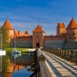 Trakai castle in Lithuania - Stock Photo