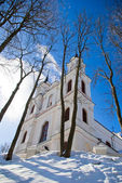 Church of the Holy Cross in Vilnius — Stock Photo