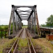 Iron railway bridge — Stock Photo #7365117
