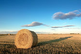 A bale of hay with a long shadow — Stock Photo