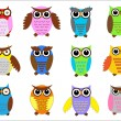 Set color owls. - Stok Vektör