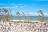 Emerald Coast — Stock Photo