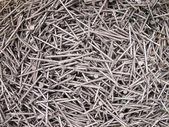 Tack nails close up — Stock Photo