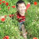 Boy with poppy — Stock Photo #7567991