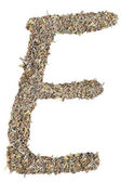 Letter E with tea leaves — Stock fotografie