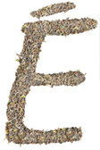 Letter E with tea leaves (french) — Stock fotografie