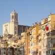 Girona Cathedral and his colourful houses — Stock Photo