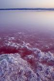 瓦伦西亚盐场四 — 图库照片