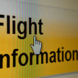 Flight information computer screen — Stock Photo