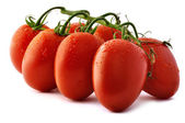 Piccadilly Tomatoes Close-Up — Stock Photo
