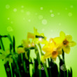 Stock Photo: Flowers on green abstract background