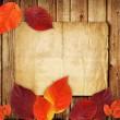 Autumnal leaf on old wood — Stock Photo #7788631