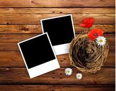 Photo frames on wood with nest — Stock Photo