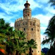 Sevilla. Torre del Oro. (Seville. Tower of Gold) — Stock Photo