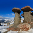 Stockfoto: Stone group in CarpathiMountains