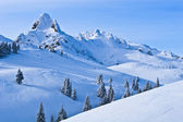 Cima di montagna — Foto Stock