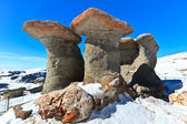 Stone group in Carpathian Mountains — Stock Photo