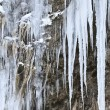 Stock Photo: Fringe of ice