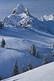 Topo da montanha — Foto Stock