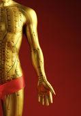 Acupuncture Dummy — Stock Photo
