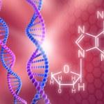 DNA Strands — Stock Photo #7242940