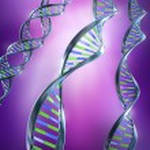 DNA Strands — Stock Photo #7244232