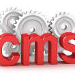 Photo: CMS : content management system concept